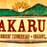Available: Umphrey's McGee at Wakarusa 2010 from LiveDownloads